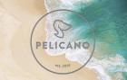 Retrato de Pelicano Praia da Rainha