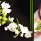 bouquet_de_noiva_2.png