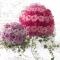 flores-bola-igreja.png
